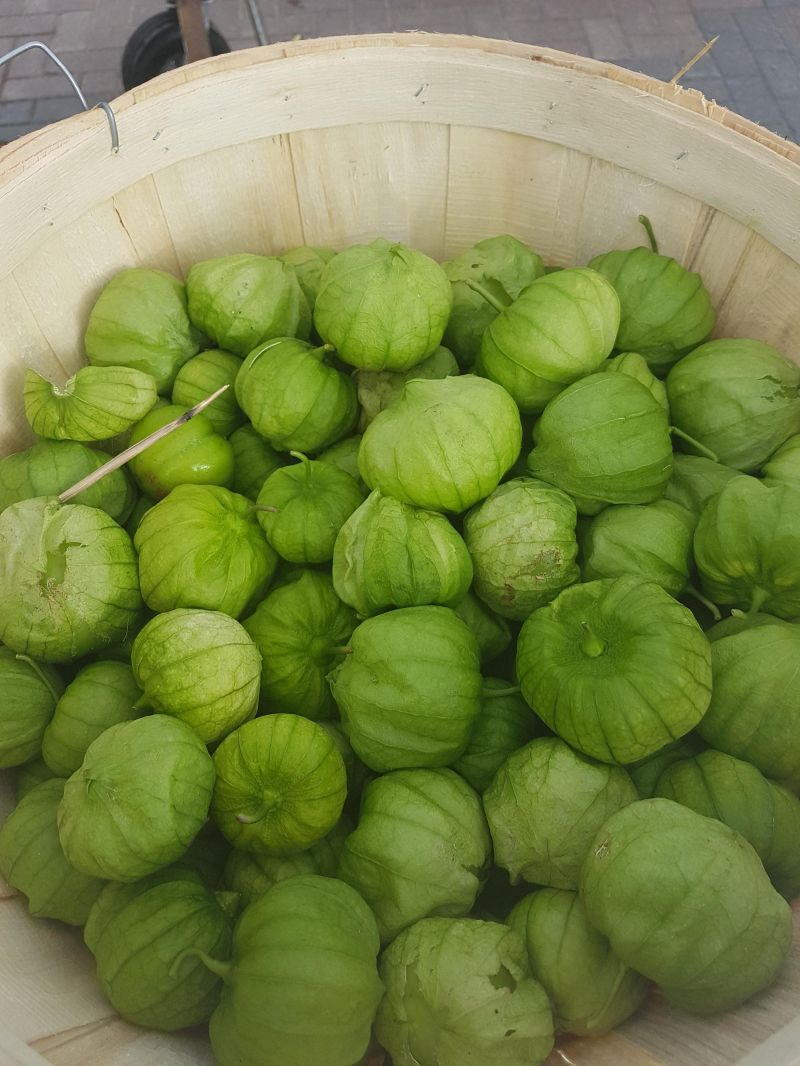 picture of 1/2 bushel of tomatillos